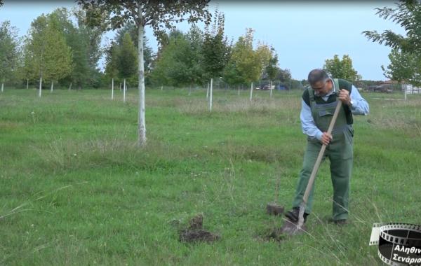 Ογδοντάχρονος μετατρέπει σκουπιδότοπους σε…δάση